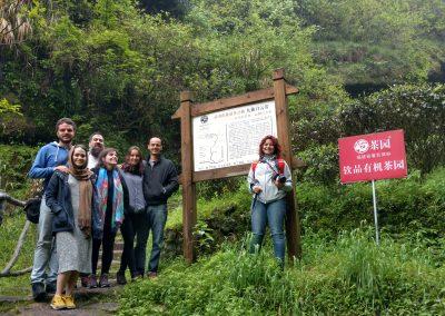 Grupo do Tea Tour Chá Yê! 2016 em Wuyi Shan, Fujian
