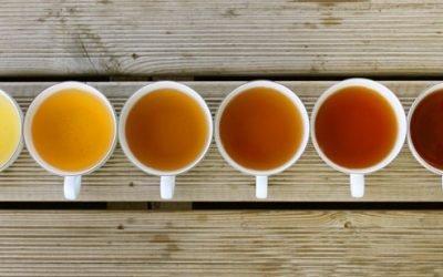 Preparando chás especiais #2 – Não pare na primeira infusão