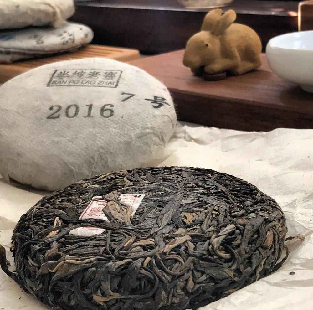 Especialização em chás chineses especiais