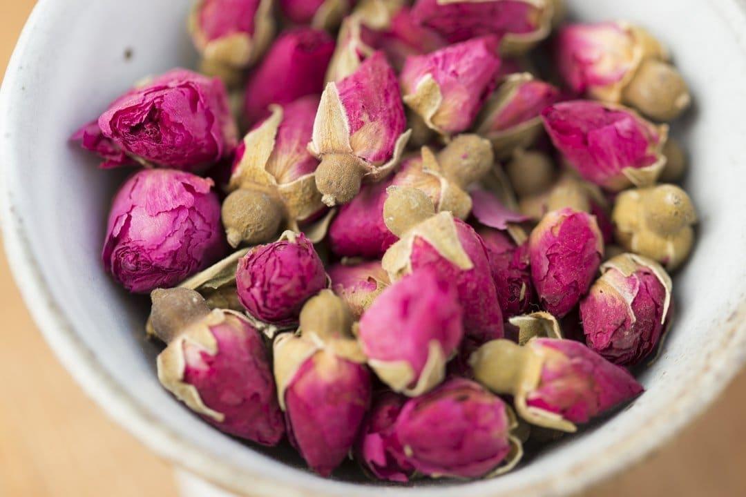 Brotos de Rosas